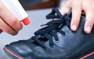Как продезинфицировать обувь самому — лучшие народные и специальные средства